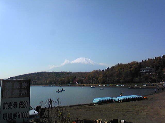 富士山、最高!紅葉も見事な秋晴れの山中湖なう。